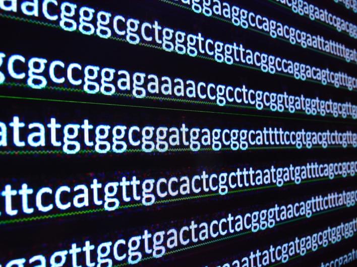 DNA Kette Humangenetik