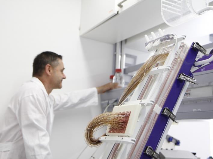 Dr. Zischka im Labor