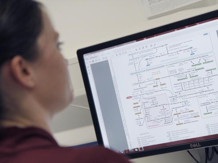 Mitarbeiterin bei einer Auswertung am Computer